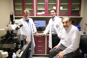 Nicolas Bazan lab members, administrative support and technical personnel of the Neuroscience Center of Excellence.